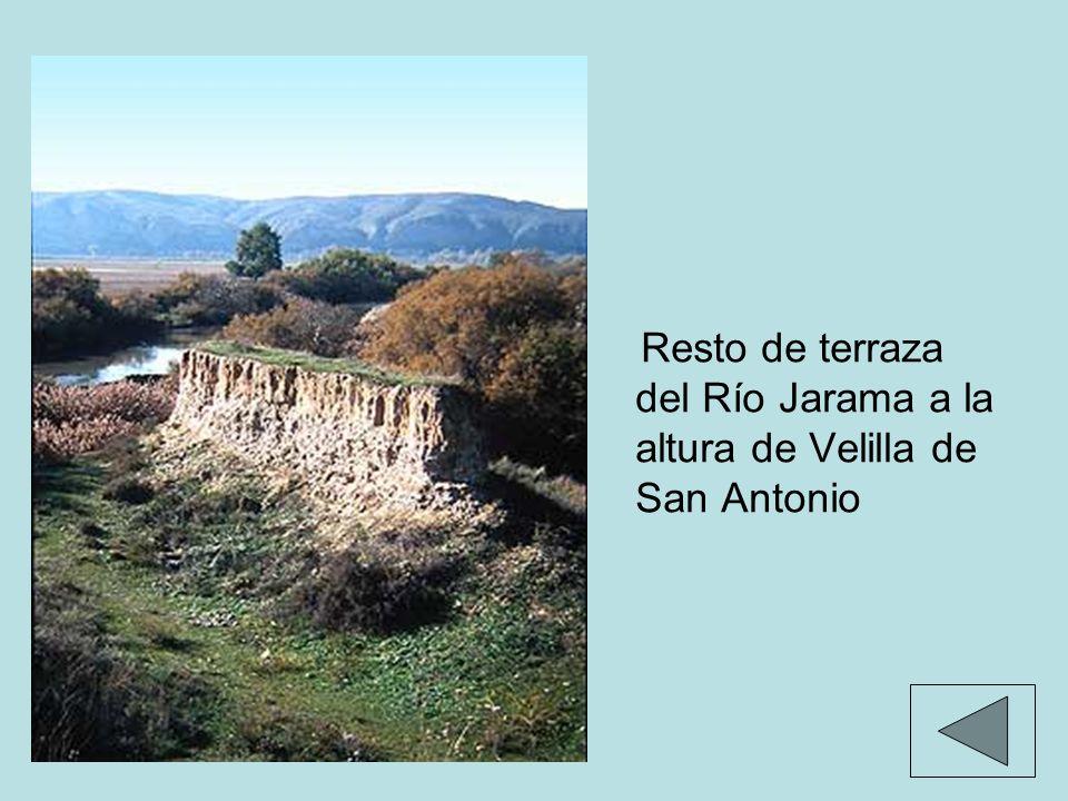 Resto de terraza del Río Jarama a la altura de Velilla de San Antonio