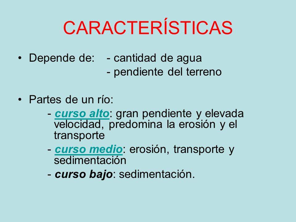 CARACTERÍSTICAS Depende de: - cantidad de agua - pendiente del terreno Partes de un río: - curso alto: gran pendiente y elevada velocidad, predomina l