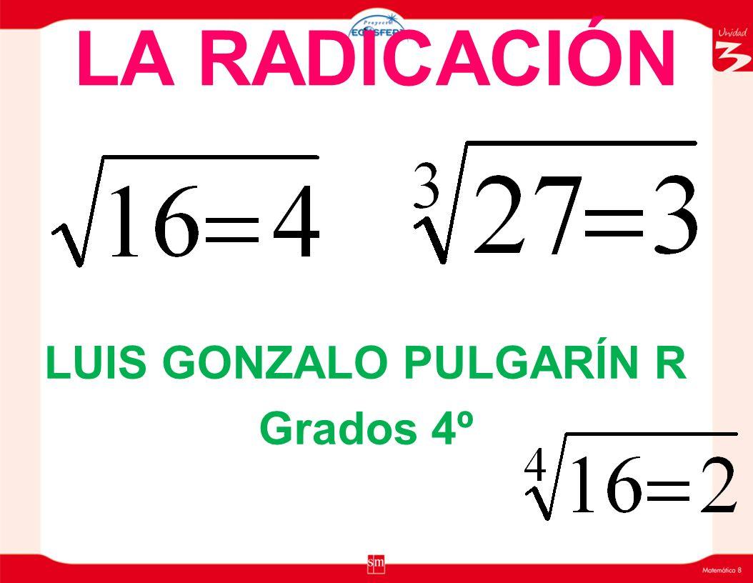LA RADICACIÓN LUIS GONZALO PULGARÍN R Grados 4º