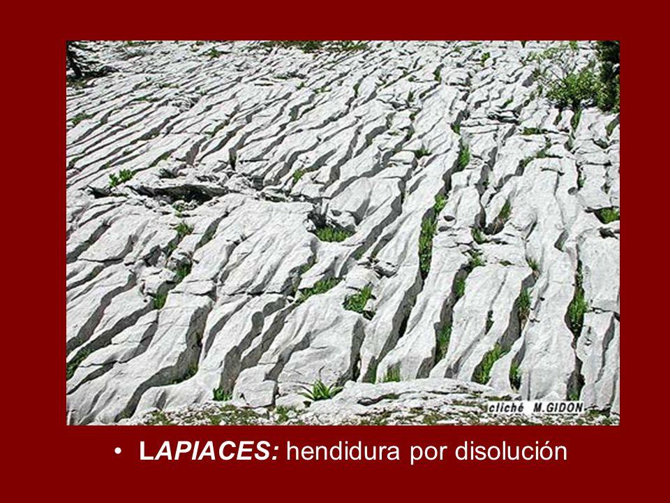 LAPIACES: hendidura por disolución