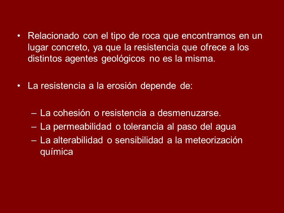 1.Dolina en Albarracín (Teruel) 2.Lapiaz en Velagua (Huesca) 3.Precipitaciones de carbonato cálcico sobre raíces de los árboles