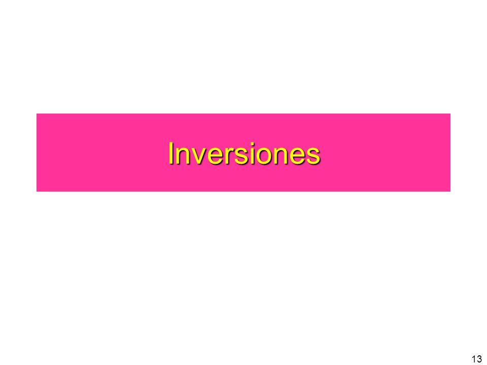 13 Inversiones