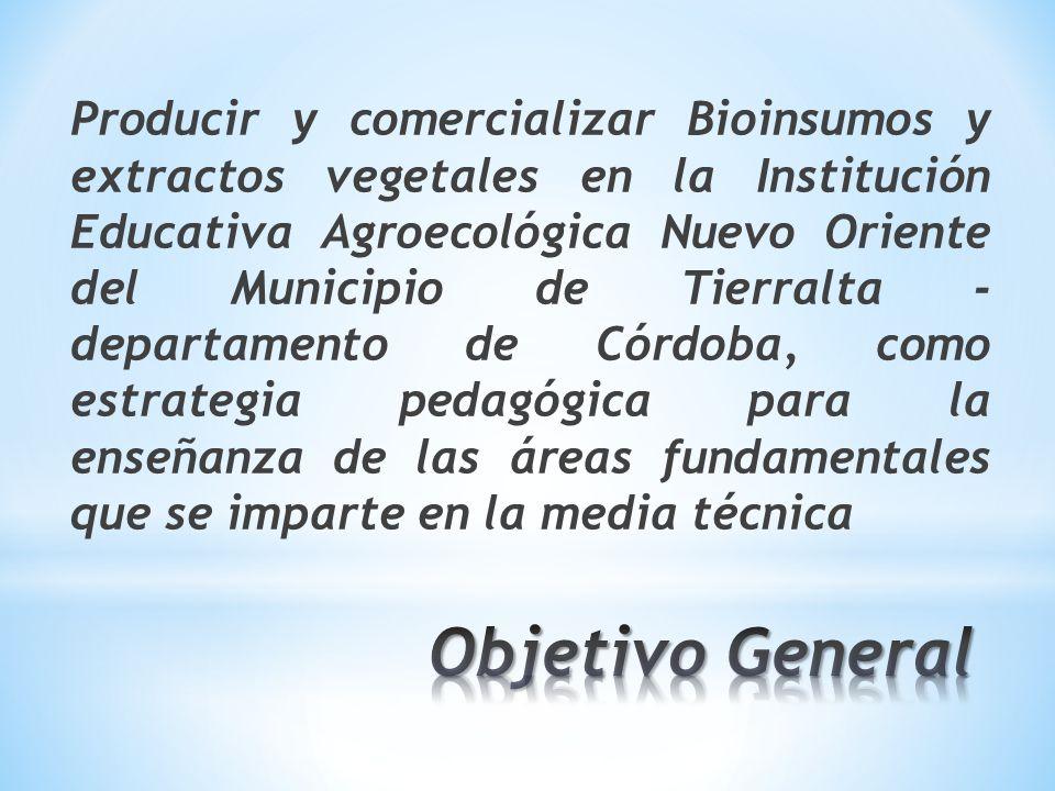 Producir y comercializar Bioinsumos y extractos vegetales en la Institución Educativa Agroecológica Nuevo Oriente del Municipio de Tierralta - departamento de Córdoba, como estrategia pedagógica para la enseñanza de las áreas fundamentales que se imparte en la media técnica
