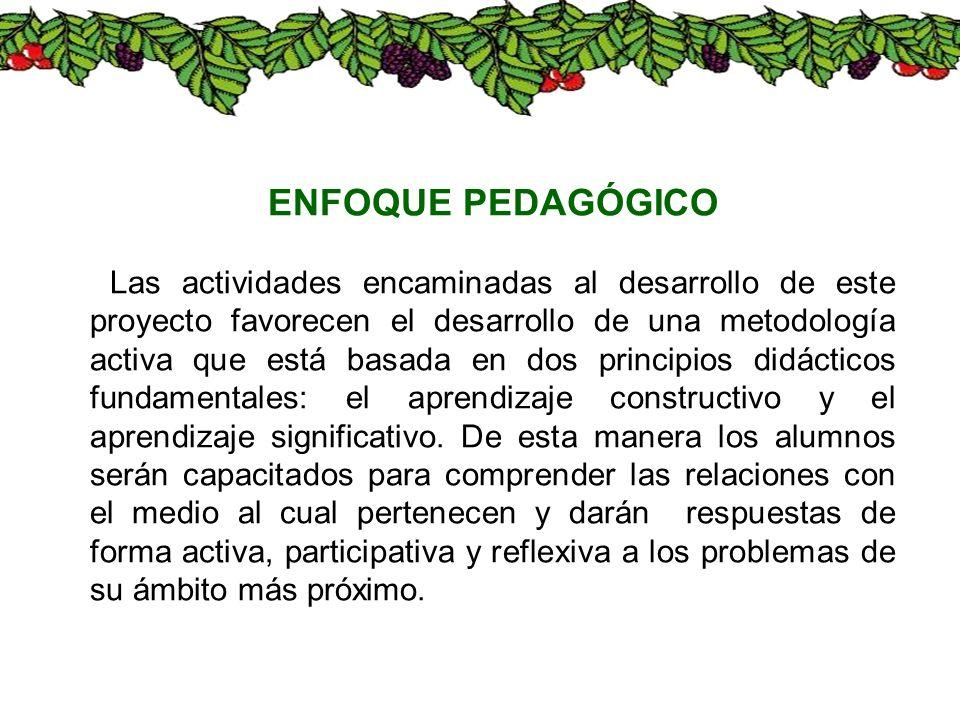 ENFOQUE PEDAGÓGICO Las actividades encaminadas al desarrollo de este proyecto favorecen el desarrollo de una metodología activa que está basada en dos