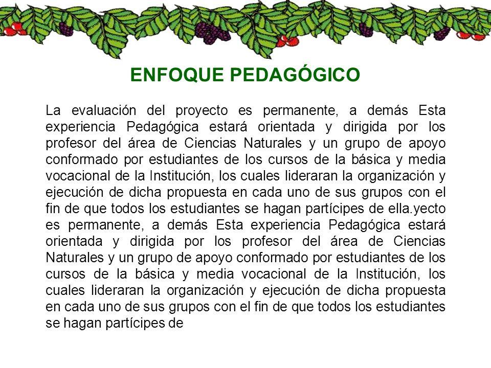 La evaluación del proyecto es permanente, a demás Esta experiencia Pedagógica estará orientada y dirigida por los profesor del área de Ciencias Natura