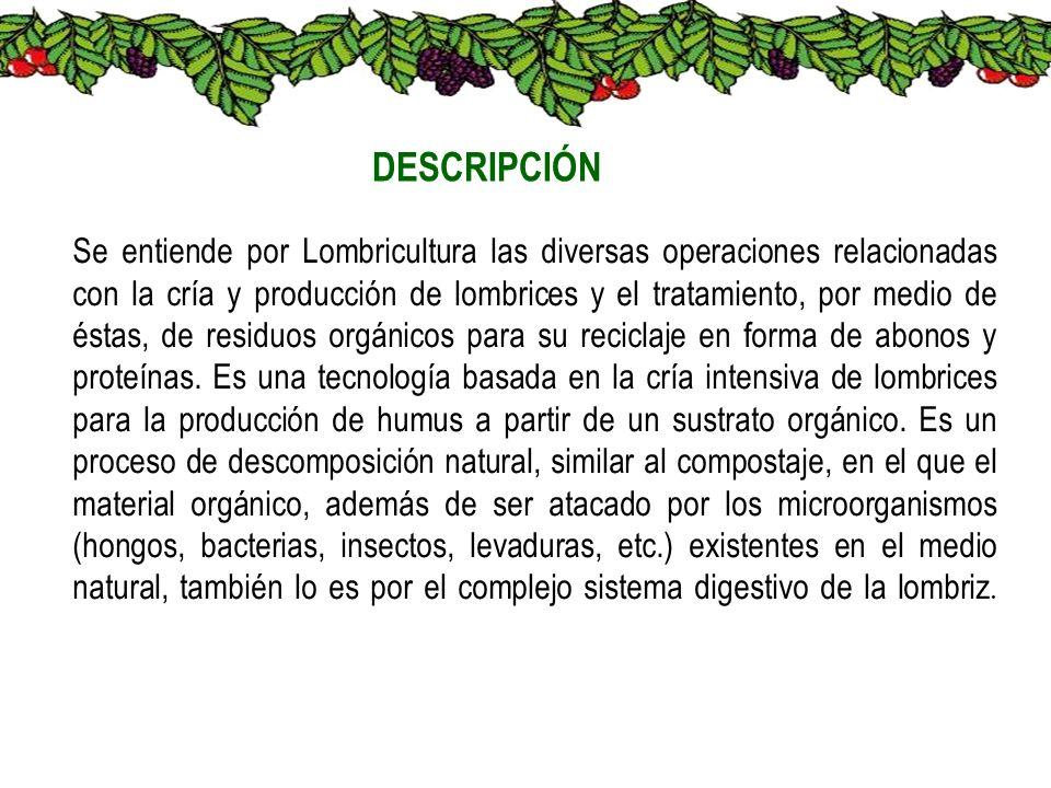 Se entiende por Lombricultura las diversas operaciones relacionadas con la cría y producción de lombrices y el tratamiento, por medio de éstas, de res
