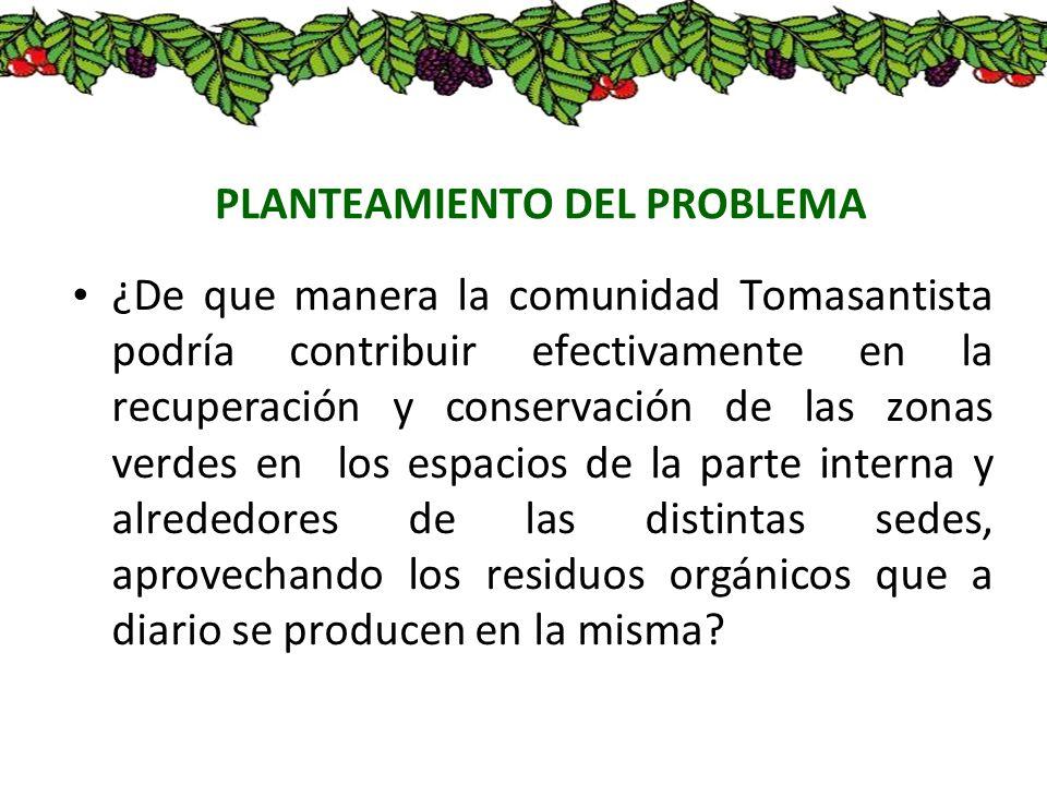 PLANTEAMIENTO DEL PROBLEMA ¿De que manera la comunidad Tomasantista podría contribuir efectivamente en la recuperación y conservación de las zonas ver