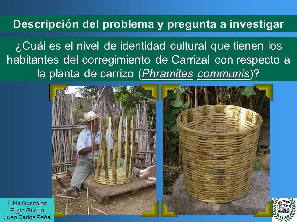 Descripción del problema y pregunta a investigar ¿Cuál es el nivel de identidad cultural que tienen los habitantes del corregimiento de Carrizal con r