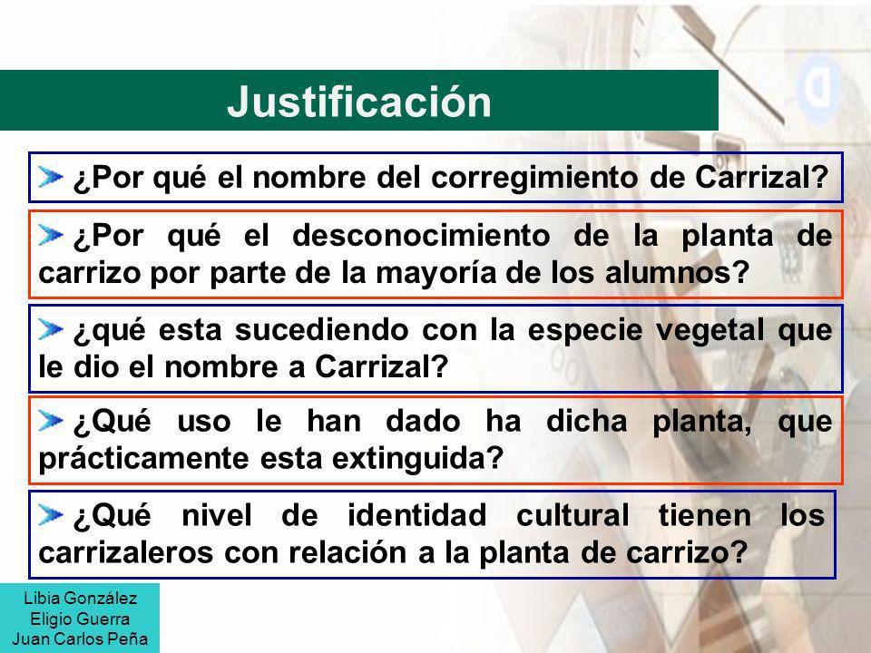 Justificación ¿Por qué el nombre del corregimiento de Carrizal? ¿Por qué el desconocimiento de la planta de carrizo por parte de la mayoría de los alu