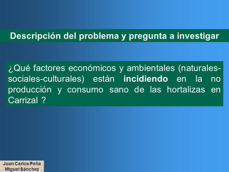 Descripción del problema y pregunta a investigar ¿Qué factores económicos y ambientales (naturales- sociales-culturales) están incidiendo en la no pro