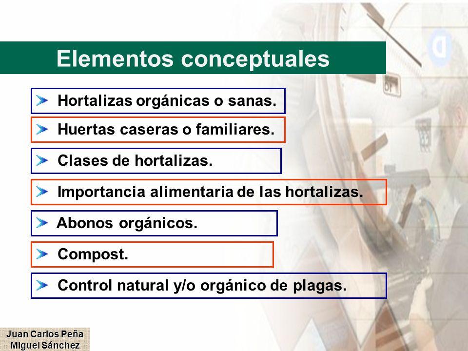 Elementos conceptuales Hortalizas orgánicas o sanas. Huertas caseras o familiares. Clases de hortalizas. Importancia alimentaria de las hortalizas. Ab