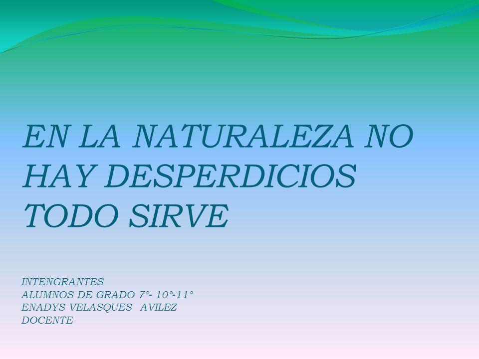 1.Nombre del Proyecto Pedagógico de Aula: En la Naturaleza no hay desperdicios todo sirve Grado (s) 7°- 10°- 11° Área (s) C.