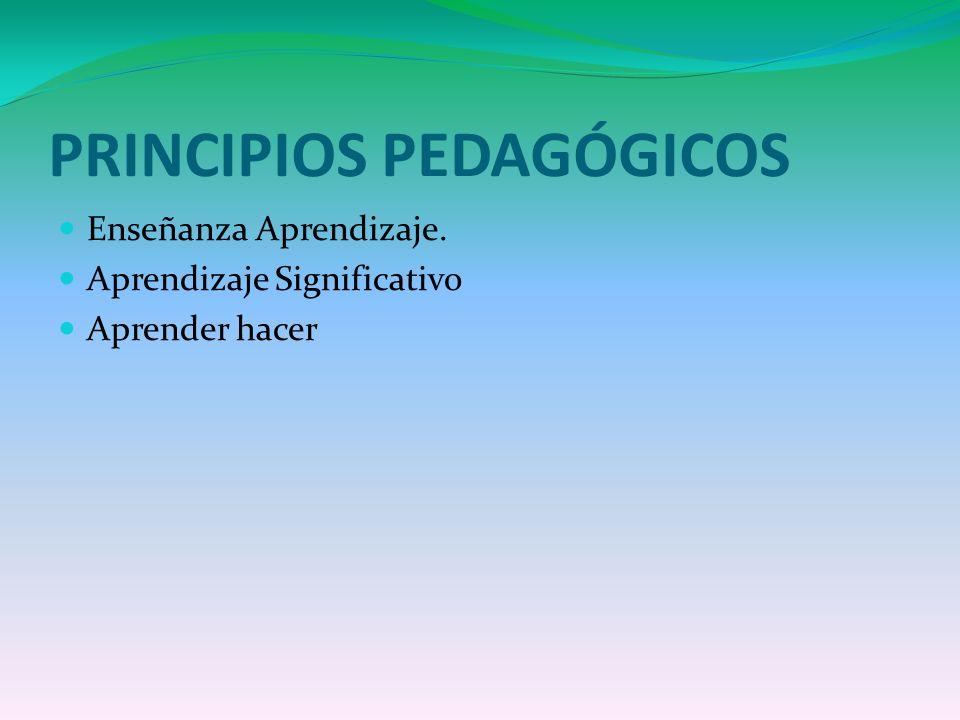 PRINCIPIOS PEDAGÓGICOS Enseñanza Aprendizaje. Aprendizaje Significativo Aprender hacer