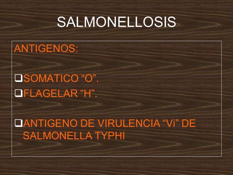 SALMONELLOSIS ANTIGENOS: SOMATICO O. FLAGELAR H. ANTIGENO DE VIRULENCIA Vi DE SALMONELLA TYPHI