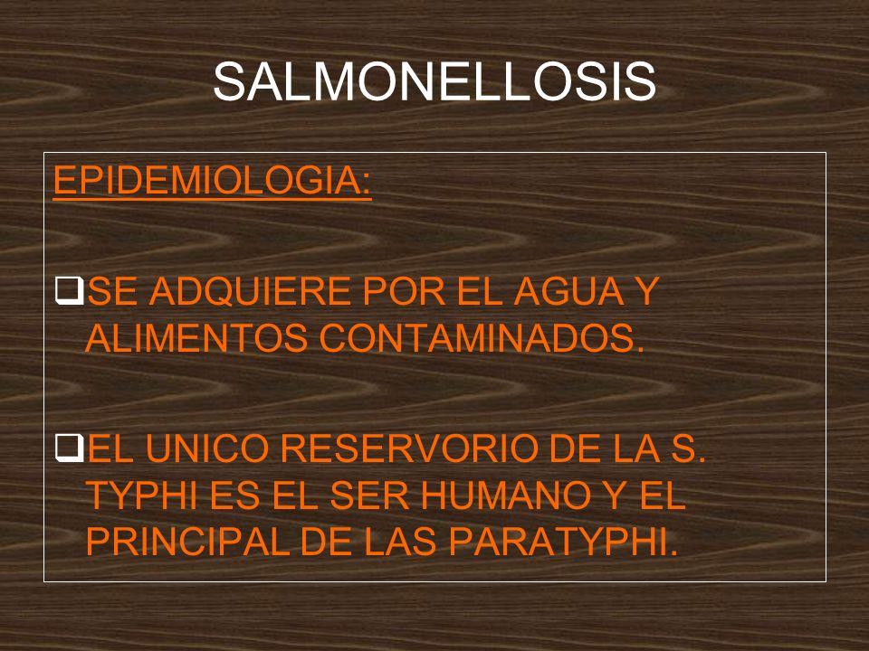 SALMONELLOSIS EPIDEMIOLOGIA: SE ADQUIERE POR EL AGUA Y ALIMENTOS CONTAMINADOS.