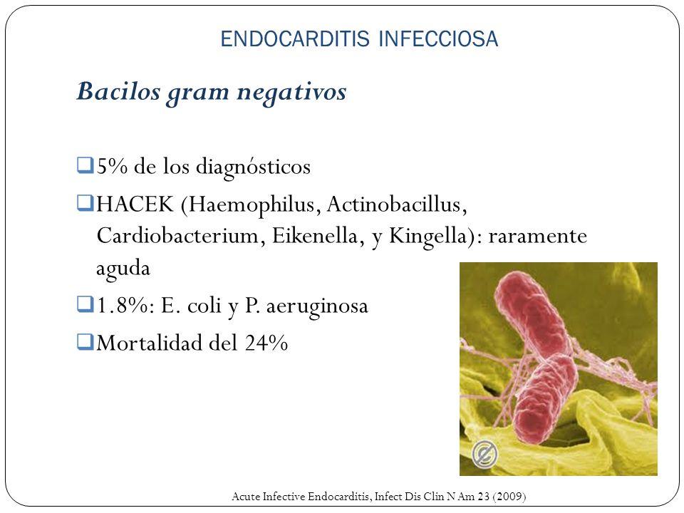 ENDOCARDITIS INFECCIOSA Bacilos gram negativos 5% de los diagnósticos HACEK (Haemophilus, Actinobacillus, Cardiobacterium, Eikenella, y Kingella): rar