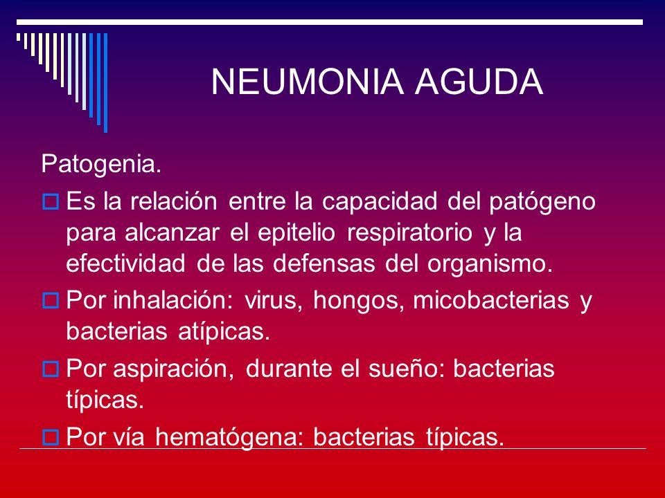 NEUMONIA AGUDA Patogenia.En la flora normal de boca y faringe, pocas veces hay flora patógena.