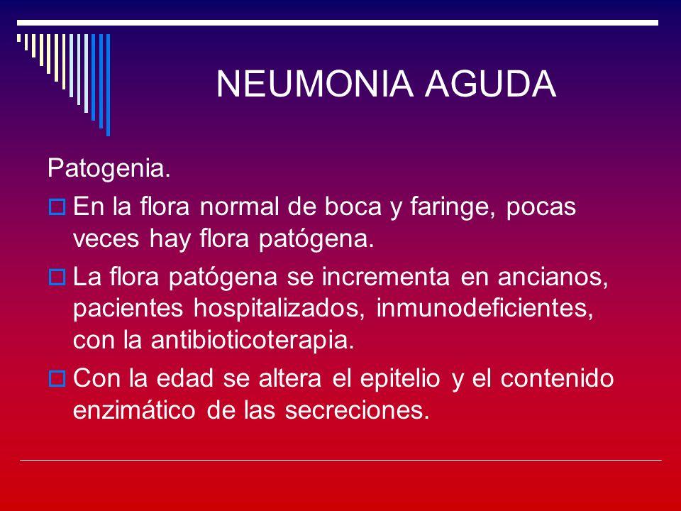 NEUMONIA AGUDA Síndrome de neumonía atípica Etiología: Mycoplasma pneumoniae.
