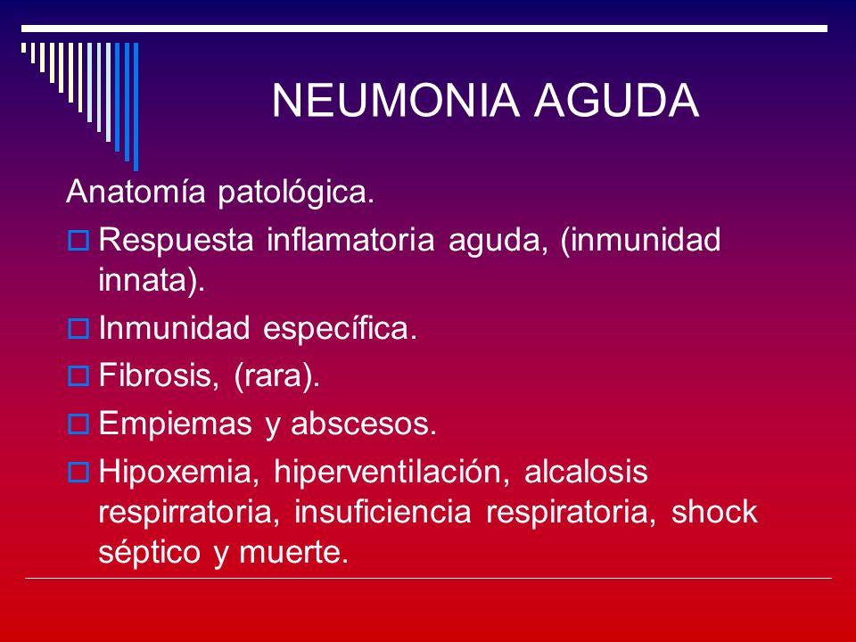NEUMONIA AGUDA Síndrome de neumonía atípica Caracteristicas clínicas: Síntomas constitucionales previos.