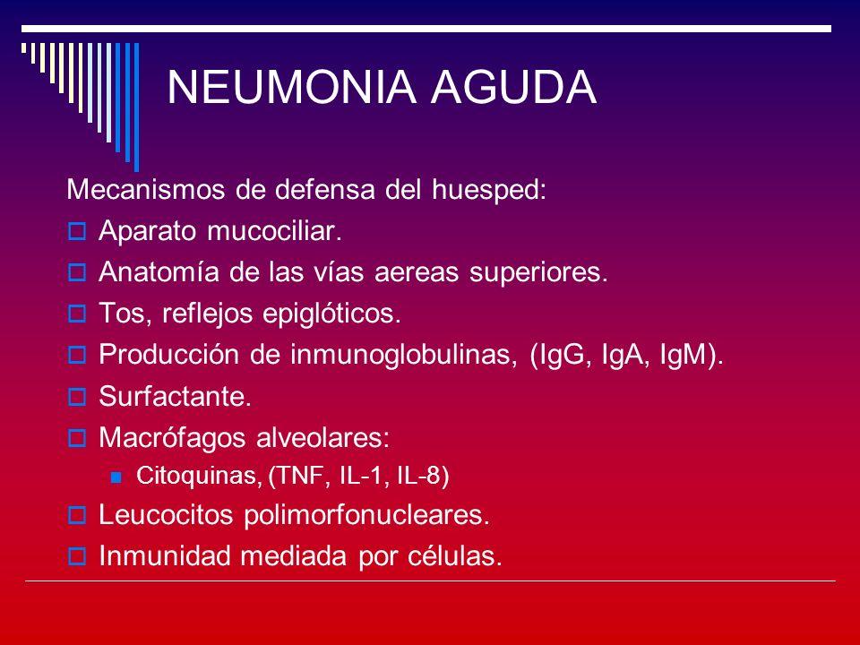 NEUMONIA AGUDA Evaluación del proceso Edad del paciente.