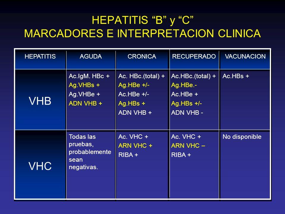 HEPATITIS B y C MARCADORES E INTERPRETACION CLINICA HEPATITISAGUDACRONICARECUPERADOVACUNACION VHB Ac.IgM. HBc + Ag.VHBs + Ag.VHBe + ADN VHB + Ac. HBc.
