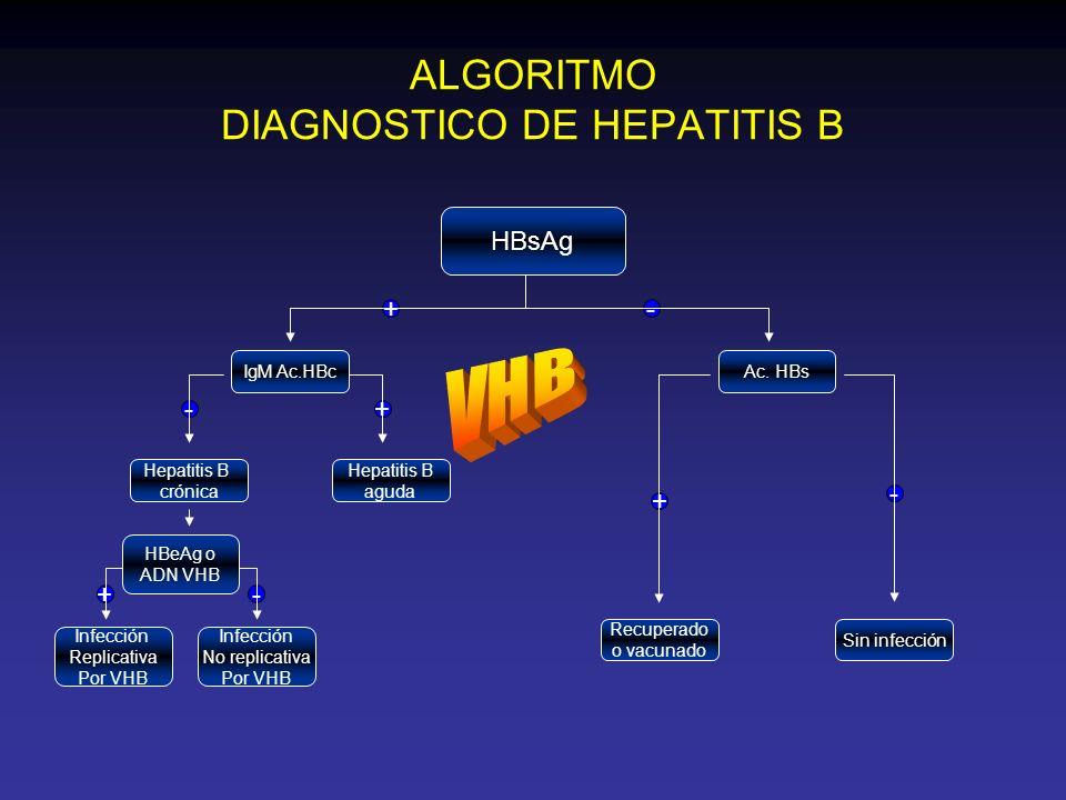 ALGORITMO DIAGNOSTICO DE HEPATITIS C Positivo Negativo Carga viral indetectable Seguimiento, repetir prueba PCR Riba 2 Parámetros bioquímicos no reactivos Considerar biopsia hepática Diagnóstico confirmado IndeterminadoNegativo Positivo Ac.