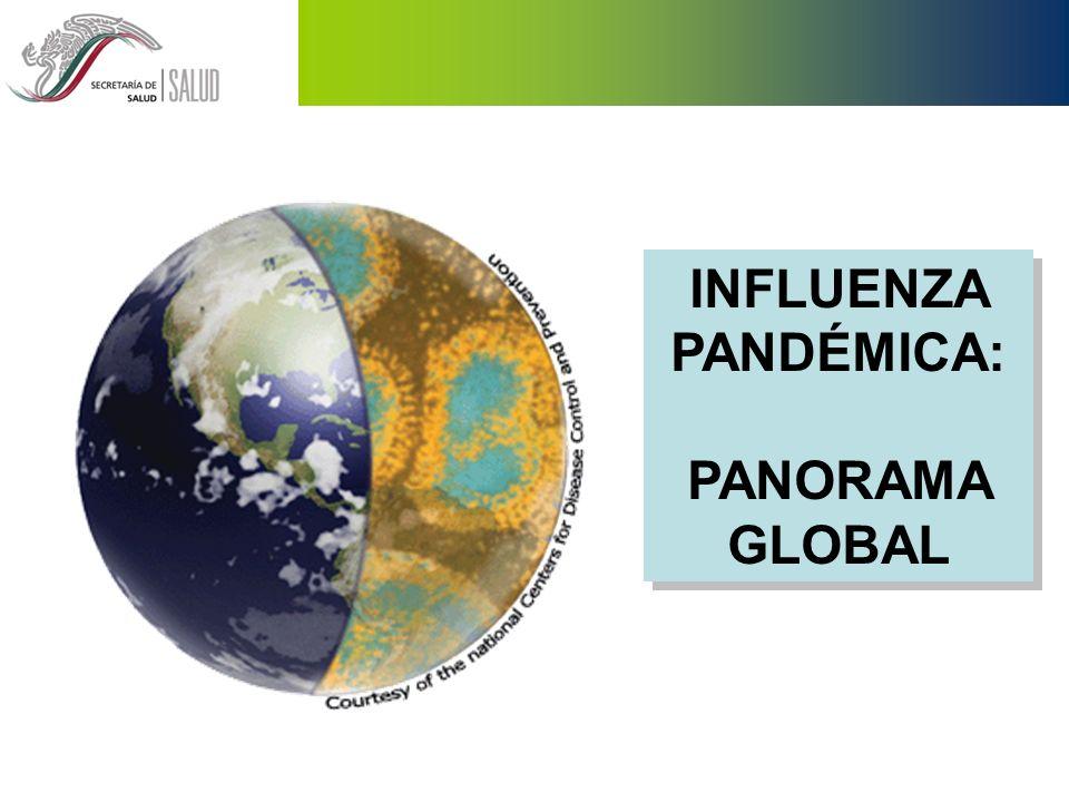Incrementos agudos en la morbilidad y la mortalidad Rápida dispersión mundial (< 1 año) Un promedio de tres pandemias por siglo Afecta 25 to 30% de la población total OTRAS CARACTERÍSTICAS IMPORTANTES PANDEMIA DE INFLUENZA
