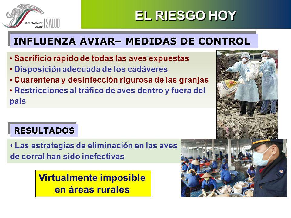 Sacrificio rápido de todas las aves expuestas Disposición adecuada de los cadáveres Cuarentena y desinfección rigurosa de las granjas Restricciones al
