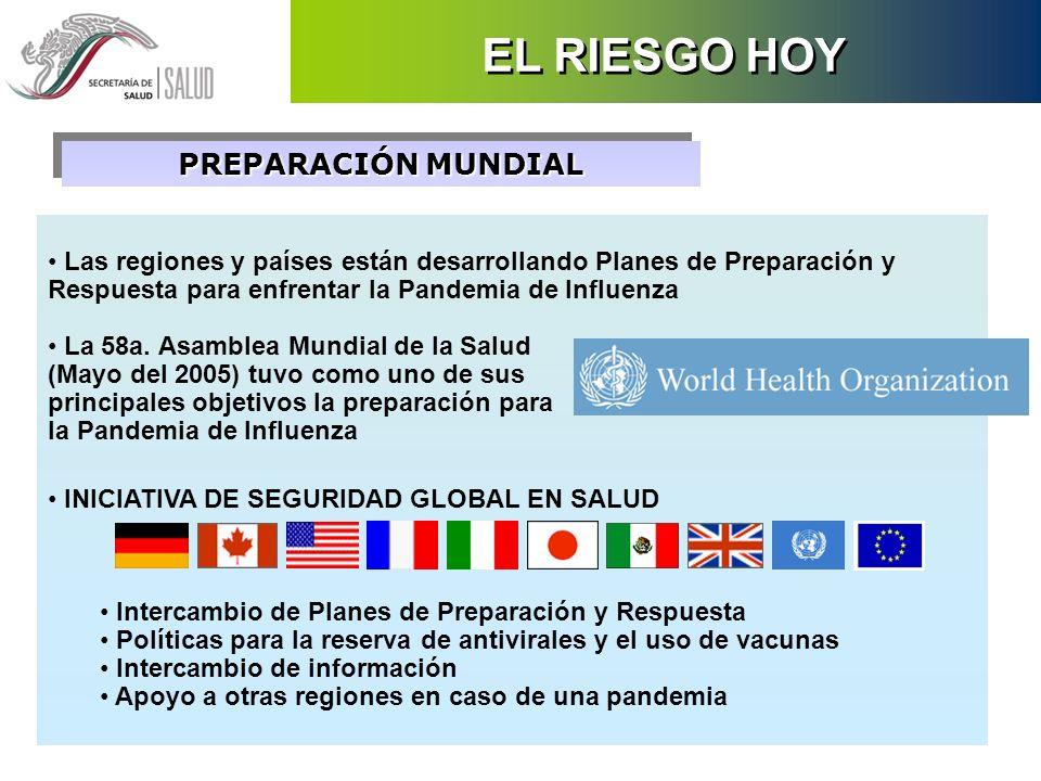 PREPARACIÓN MUNDIAL Las regiones y países están desarrollando Planes de Preparación y Respuesta para enfrentar la Pandemia de Influenza La 58a. Asambl