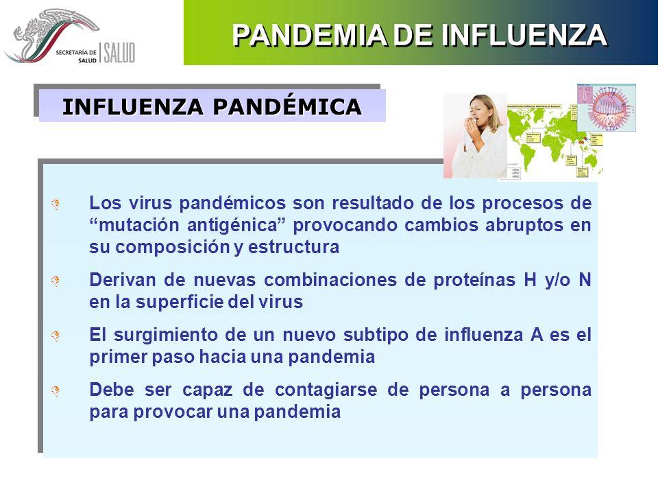 INFLUENZA PANDÉMICA D Los virus pandémicos son resultado de los procesos de mutación antigénica provocando cambios abruptos en su composición y estruc