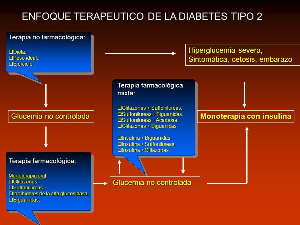 ENFOQUE TERAPEUTICO DE LA DIABETES TIPO 2 Terapia no farmacológica: Dieta. Dieta. Peso ideal.. Peso ideal.. Ejercicio. Ejercicio. Terapia farmacológic