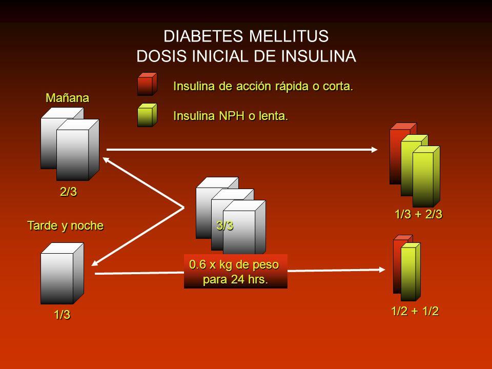 DIABETES MELLITUS DOSIS INICIAL DE INSULINA 2/3 1/3 1/3 + 2/3 1/2 + 1/2 Mañana Tarde y noche 3/3 Insulina de acción rápida o corta. Insulina NPH o len