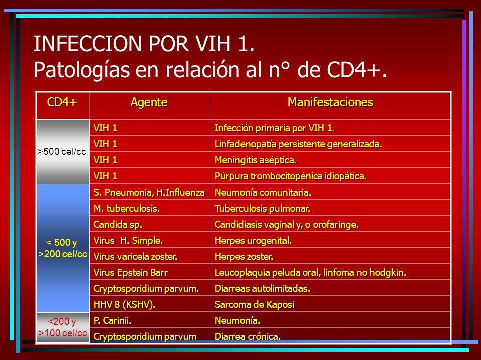 INFECCION POR VIH 1. Patologías en relación al n° de CD4+. CD4+ AgenteManifestaciones VIH 1 Infección primaria por VIH 1. VIH 1 Linfadenopatía persist