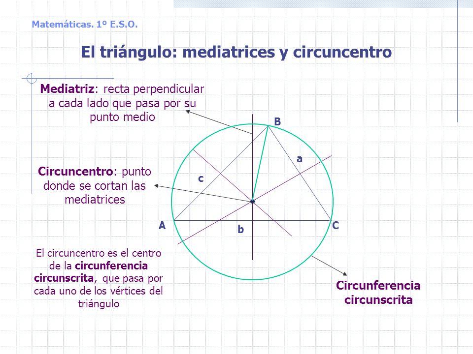 Matemáticas. 1º E.S.O. A B C a b c El triángulo: alturas y ortocentro Ortocentro: punto donde se cortan las alturas Altura: perpendicular a un lado qu
