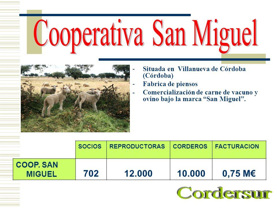 -Situada en Villanueva de Córdoba (Córdoba) -Fabrica de piensos - Comercialización de carne de vacuno y ovino bajo la marca San Miguel. SOCIOSREPRODUC