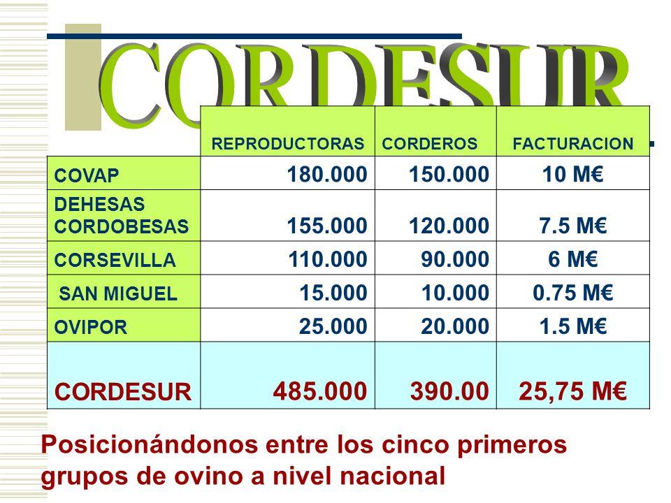 REPRODUCTORASCORDEROSFACTURACION COVAP 180.000150.00010 M DEHESAS CORDOBESAS 155.000120.0007.5 M CORSEVILLA 110.00090.0006 M SAN MIGUEL 15.00010.0000.