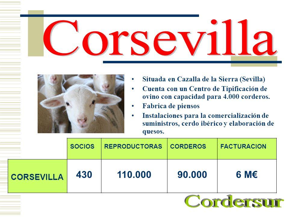 Situada en Cazalla de la Sierra (Sevilla) Cuenta con un Centro de Tipificación de ovino con capacidad para 4.000 corderos. Fabrica de piensos Instalac