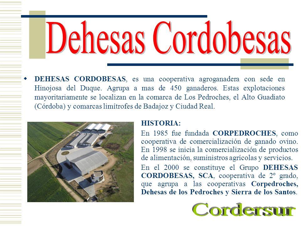 HISTORIA: En 1985 fue fundada CORPEDROCHES, como cooperativa de comercialización de ganado ovino. En 1998 se inicia la comercialización de productos d