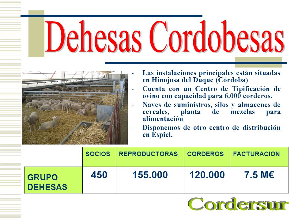-Las instalaciones principales están situadas en Hinojosa del Duque (Córdoba) -Cuenta con un Centro de Tipificación de ovino con capacidad para 6.000
