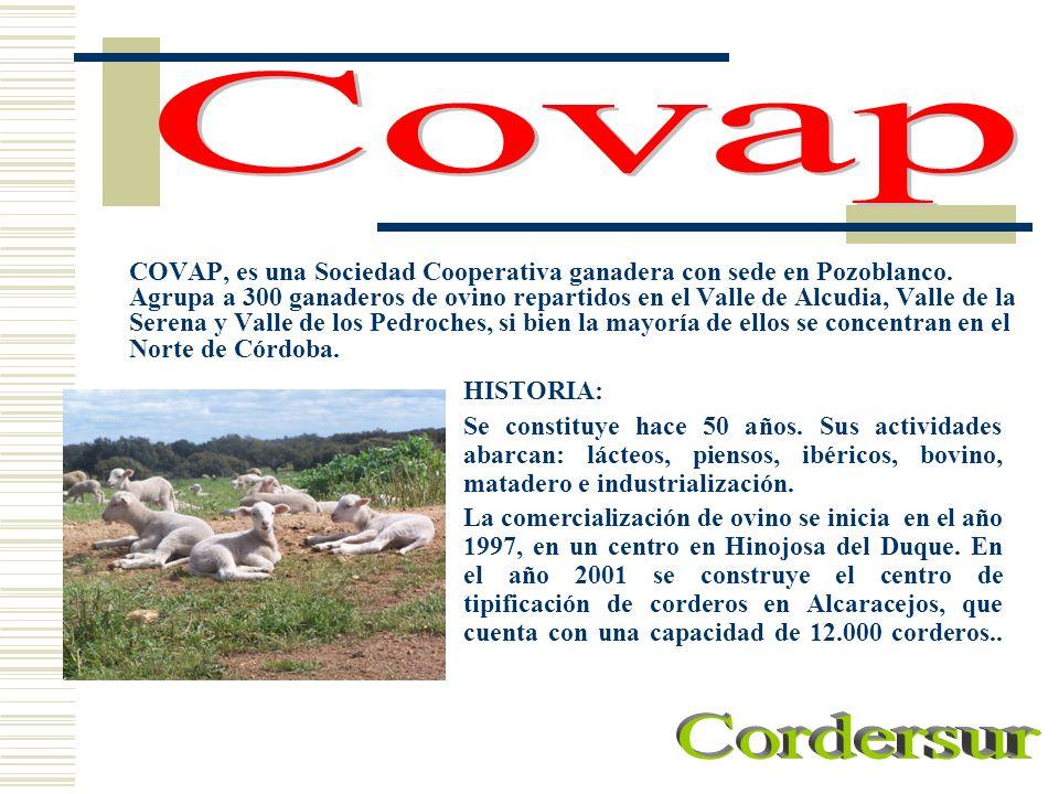 COVAP, es una Sociedad Cooperativa ganadera con sede en Pozoblanco. Agrupa a 300 ganaderos de ovino repartidos en el Valle de Alcudia, Valle de la Ser