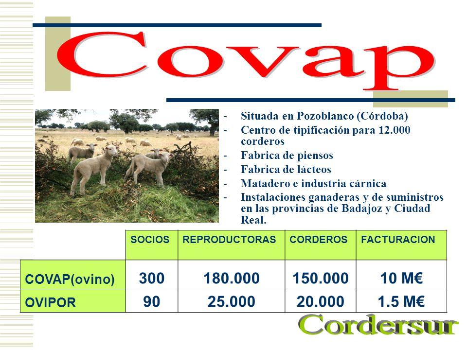 -Situada en Pozoblanco (Córdoba) -Centro de tipificación para 12.000 corderos -Fabrica de piensos -Fabrica de lácteos -Matadero e industria cárnica -I