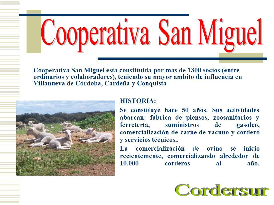 Cooperativa San Miguel esta constituida por mas de 1300 socios (entre ordinarios y colaboradores), teniendo su mayor ambito de influencia en Villanuev