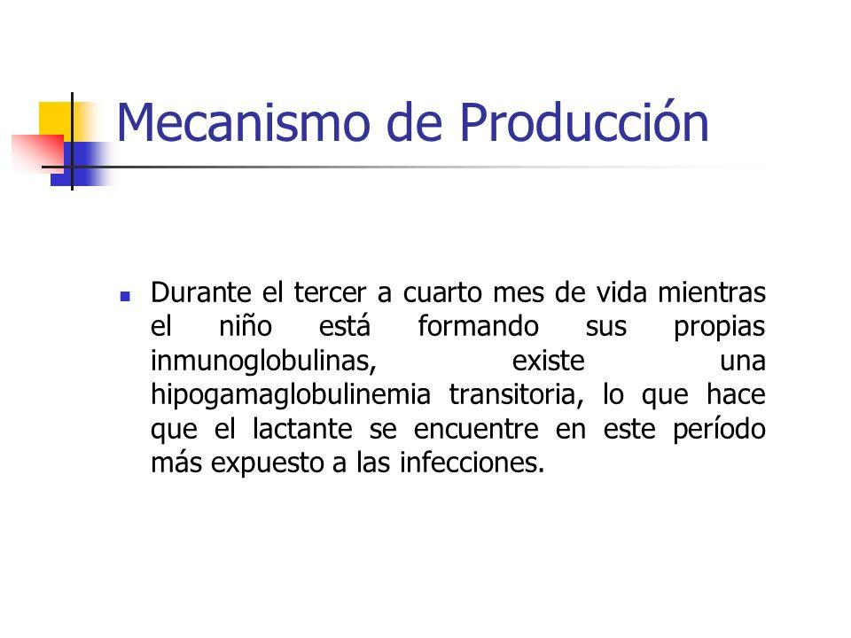 Mecanismo de Producción Inmunidad Pasiva: Los anticuerpos que le aporta su madre son variados y dependen de las enfermedades, o contacto que ella haya tenido con diferentes gérmenes (antígenos).