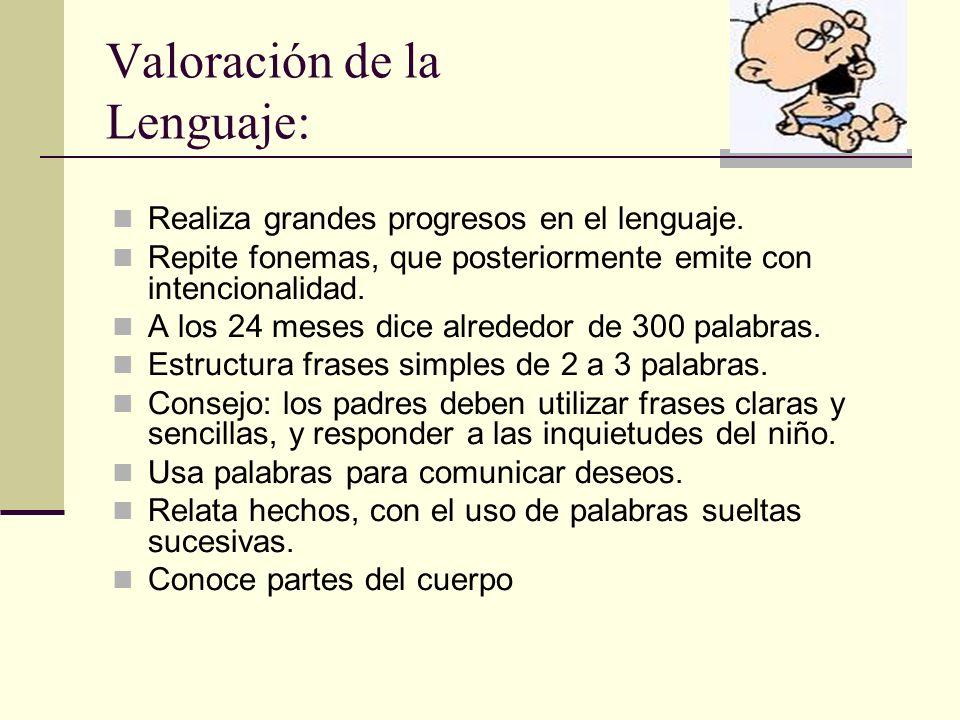 Valoración de la Lenguaje: Realiza grandes progresos en el lenguaje.