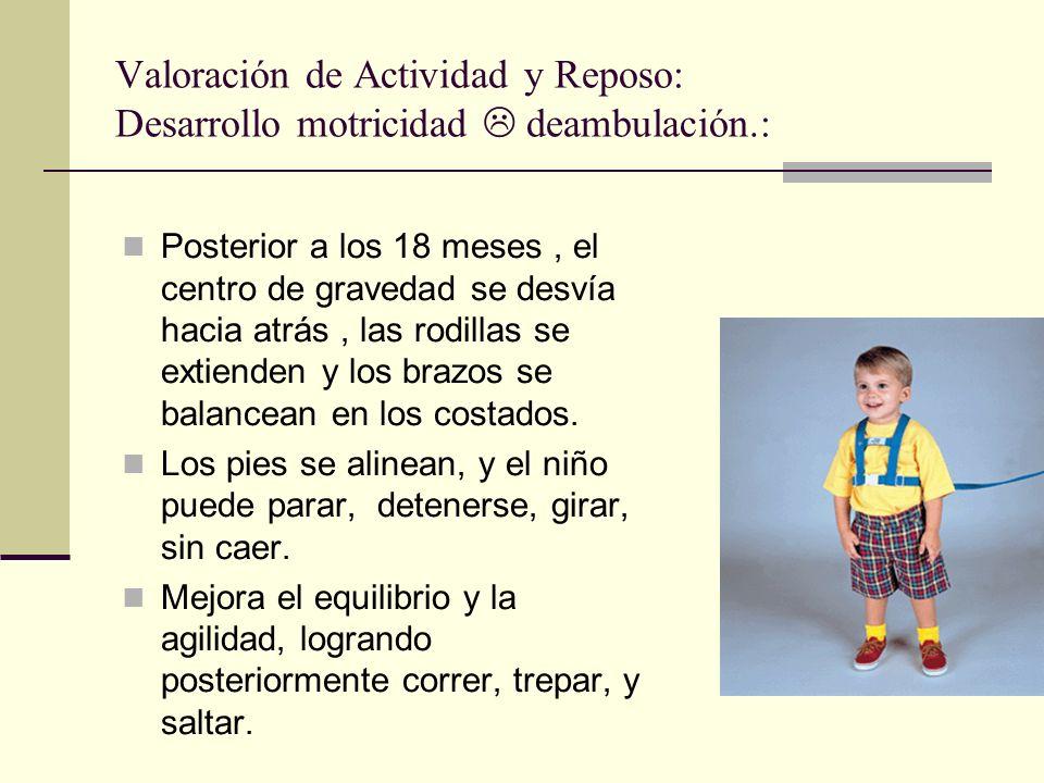 Posterior a los 18 meses, el centro de gravedad se desvía hacia atrás, las rodillas se extienden y los brazos se balancean en los costados.