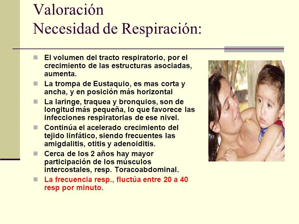 Valoración Necesidad de Respiración: El volumen del tracto respiratorio, por el crecimiento de las estructuras asociadas, aumenta.