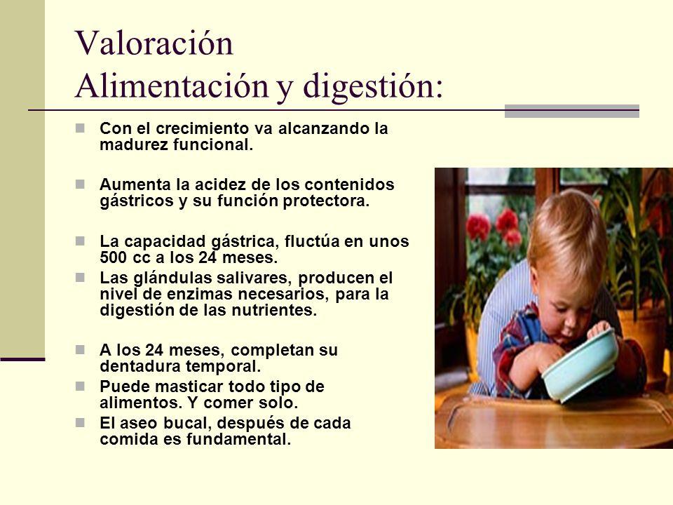 Valoración Alimentación y digestión: Con el crecimiento va alcanzando la madurez funcional.