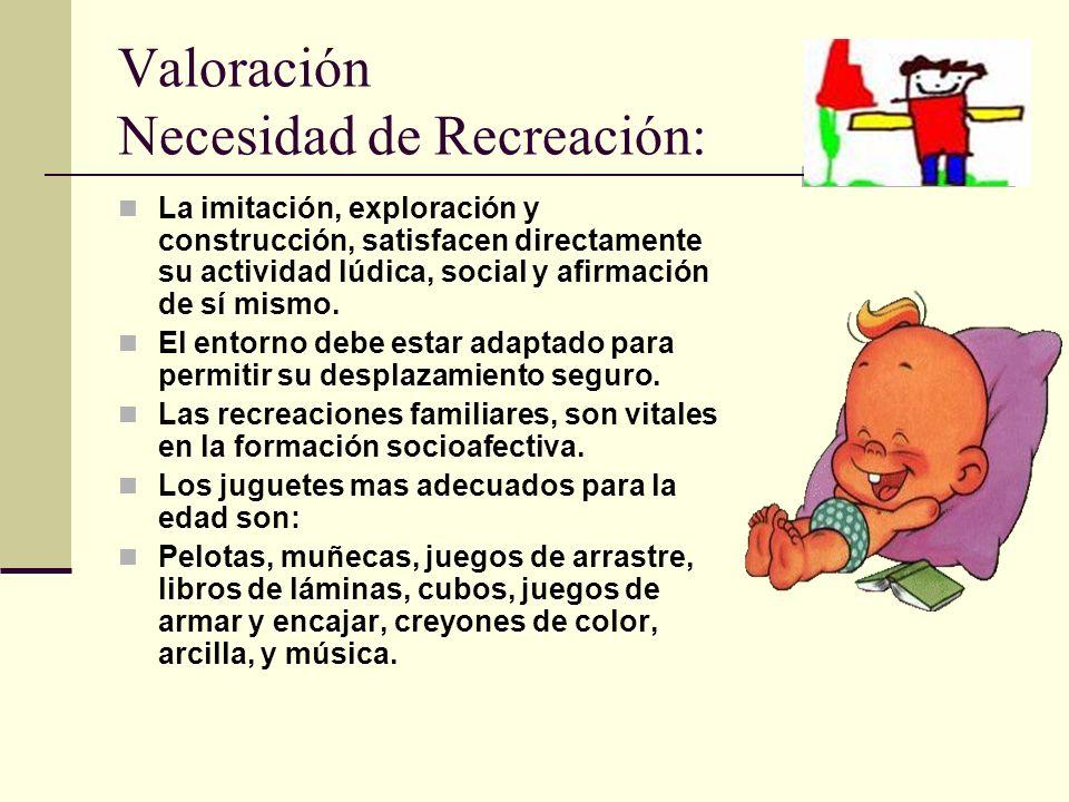 Valoración Necesidad de Recreación: La imitación, exploración y construcción, satisfacen directamente su actividad lúdica, social y afirmación de sí mismo.