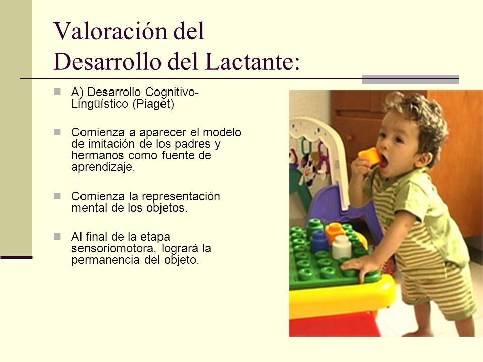 Valoración del Desarrollo del Lactante: A) Desarrollo Cognitivo- Lingüístico (Piaget) Comienza a aparecer el modelo de imitación de los padres y hermanos como fuente de aprendizaje.