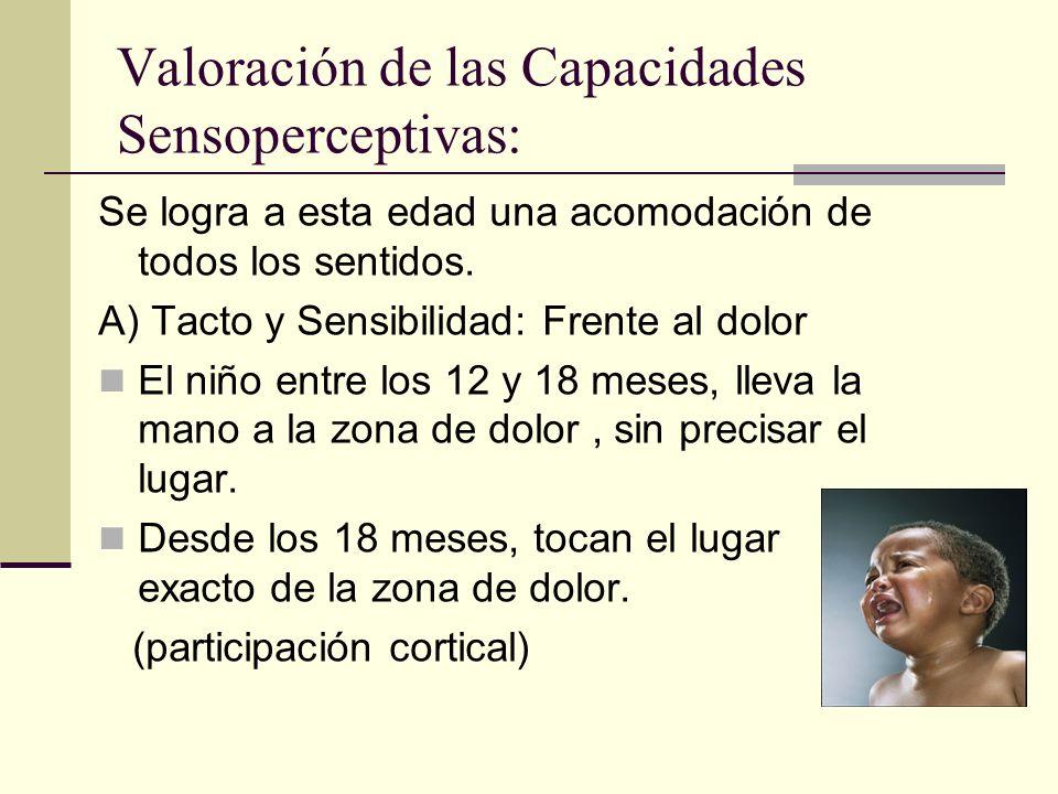 Valoración de las Capacidades Sensoperceptivas: Se logra a esta edad una acomodación de todos los sentidos.
